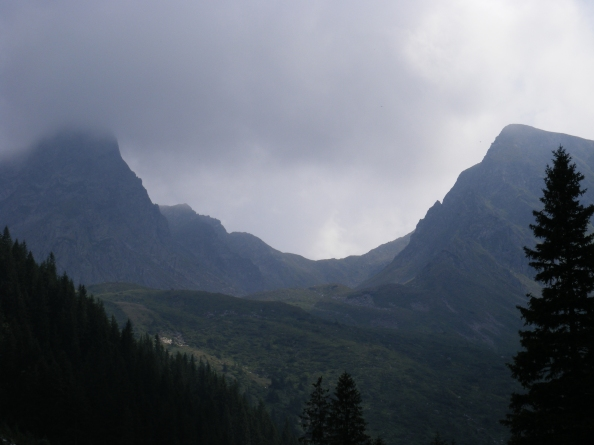 2008_08060025
