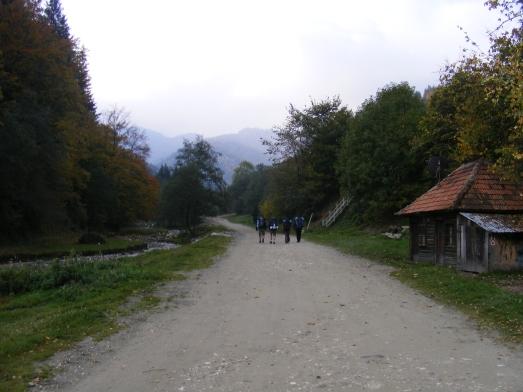 2009_10130022
